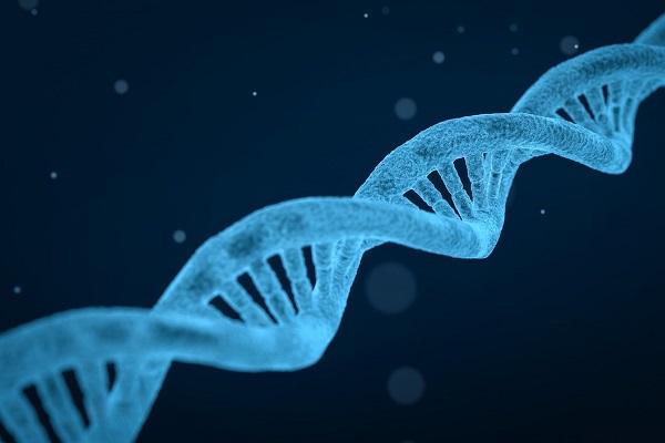 Mit grünen Mutationen zum Chemie-Nobelpreis